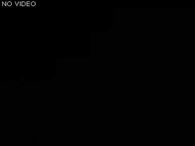 Rute 161 Middelfart (164) - Denmark