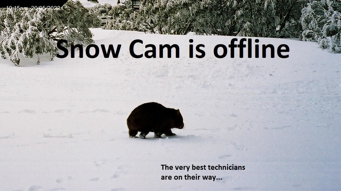 Dingo Dell - Mt Buffalo Snow Cam - Australia