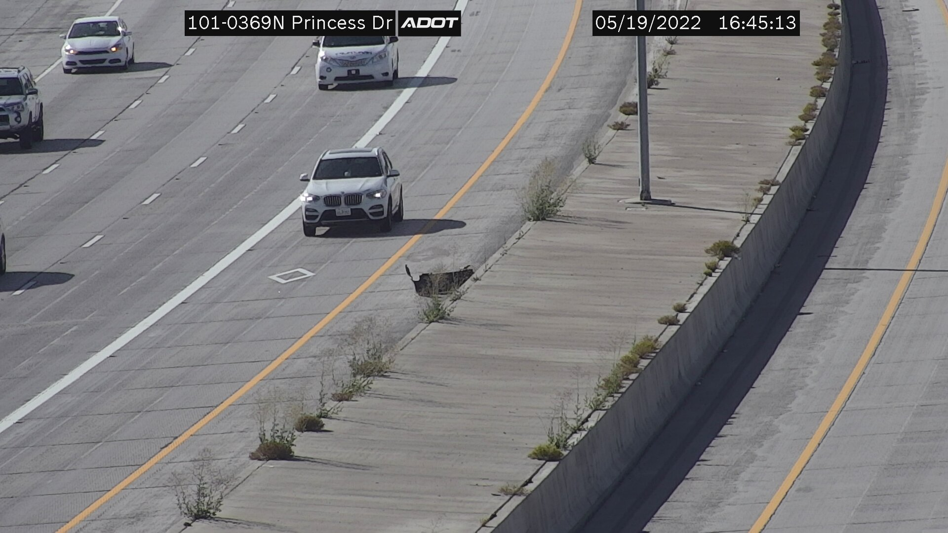 Princess Dr NB (L101) (129) - Phoenix and Arizona