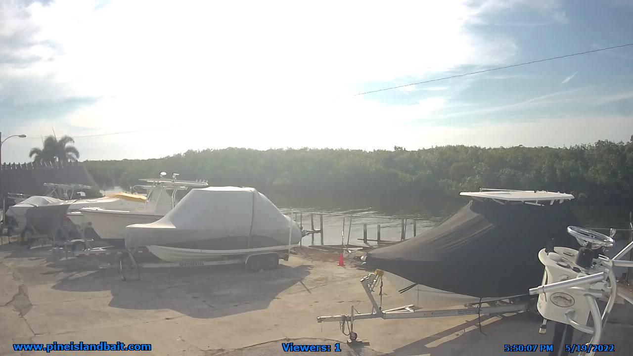 Matlacha, D & D Bait and Tackle Marina - Florida