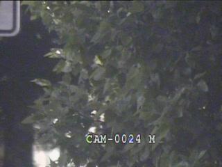 Colesville Rd (US-29) @ Fenton St (2096) - Washington DC