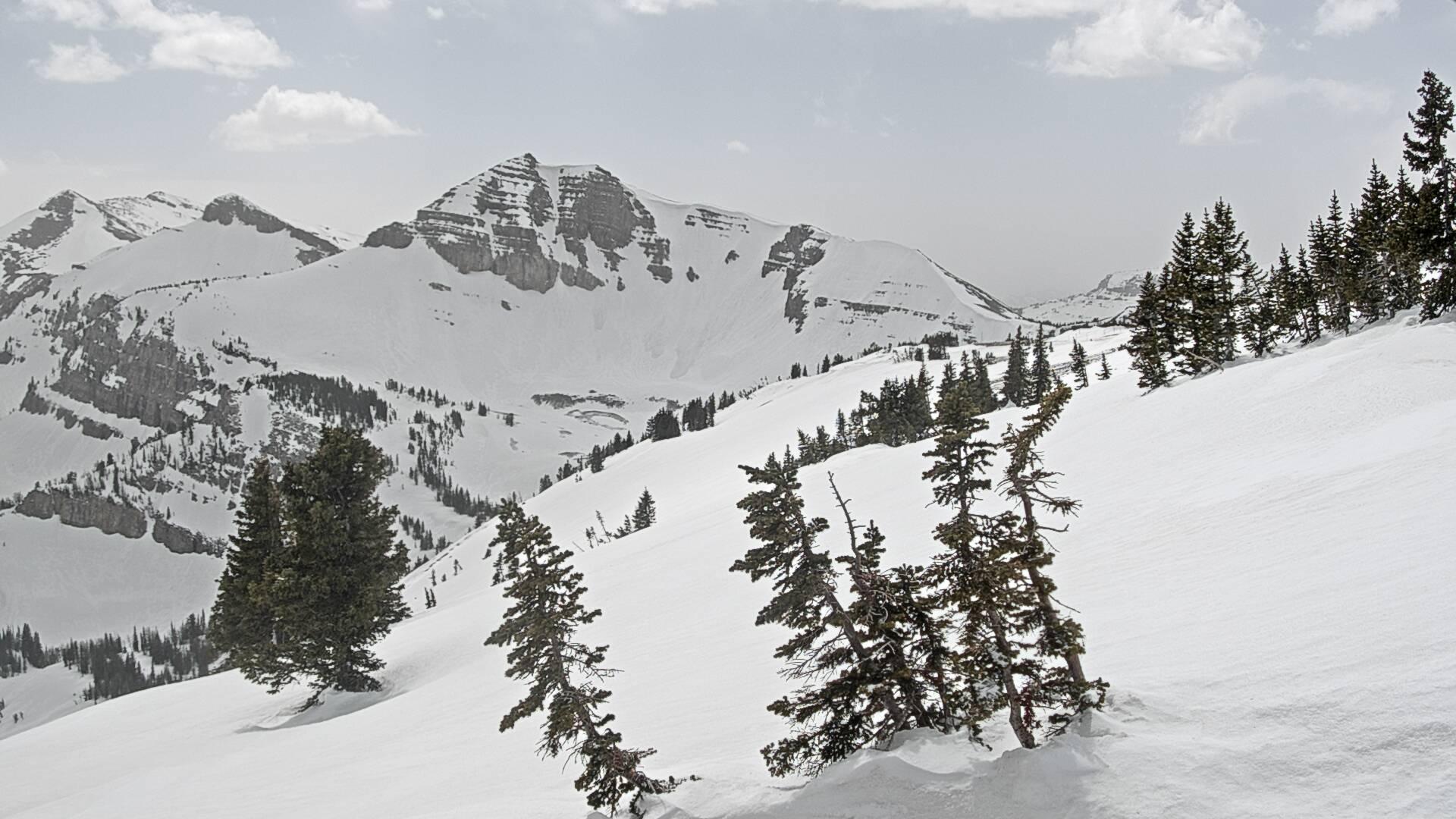 JHMR Cody Bowl - Wyoming