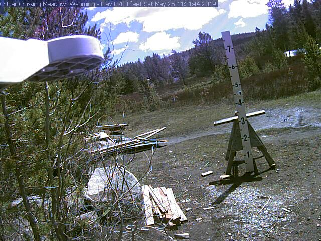 Critter Cam Meadow view - Wyoming