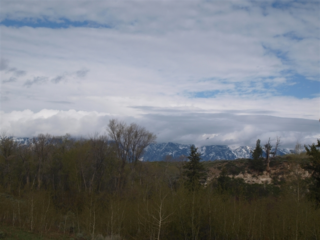 Thunder Basin Nation Grassland, WY - Wyoming